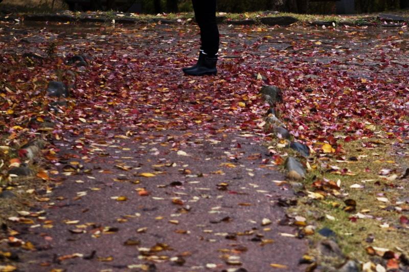 가을을적시다_04.jpg