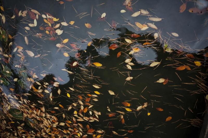 가을을적시다_06.jpg