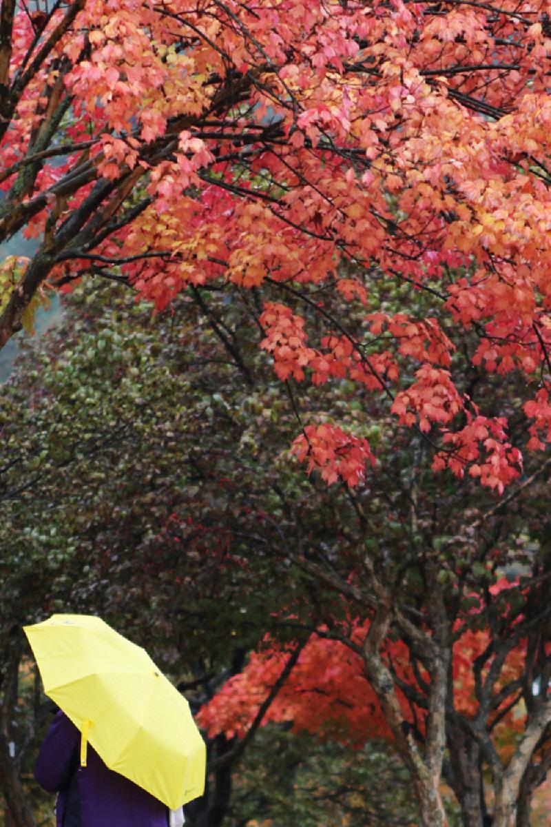가을을적시다_08.jpg
