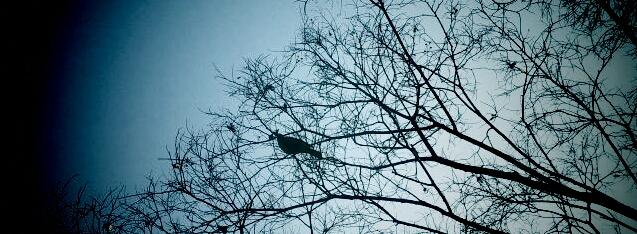 2011-02-22-09-01-13-074.jpg