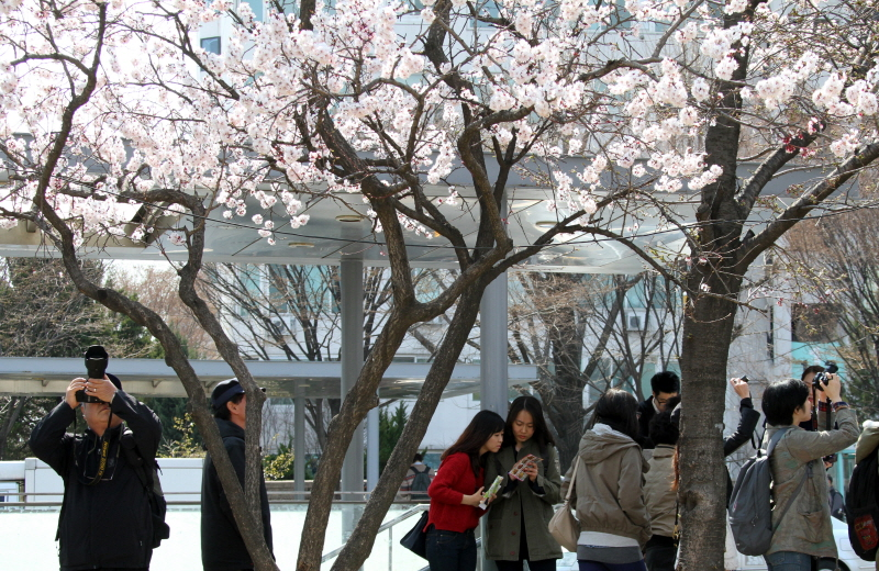 2013-spring2.JPG