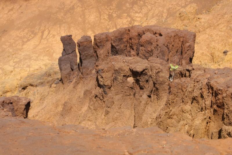 사막화-뉴칼레도니아-01.JPG