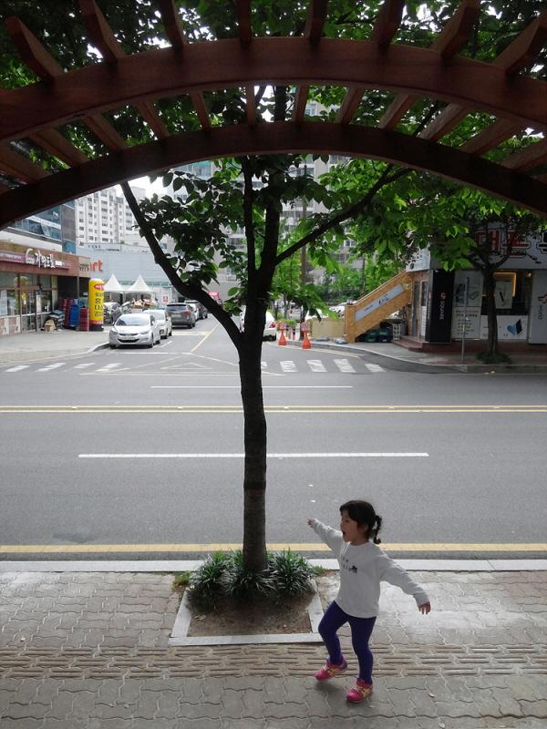 tree0025.jpg