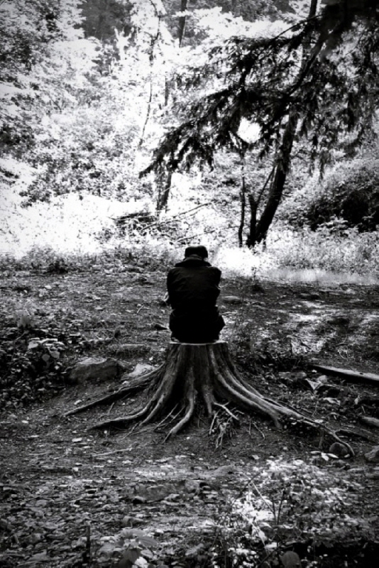 tree0030.jpg