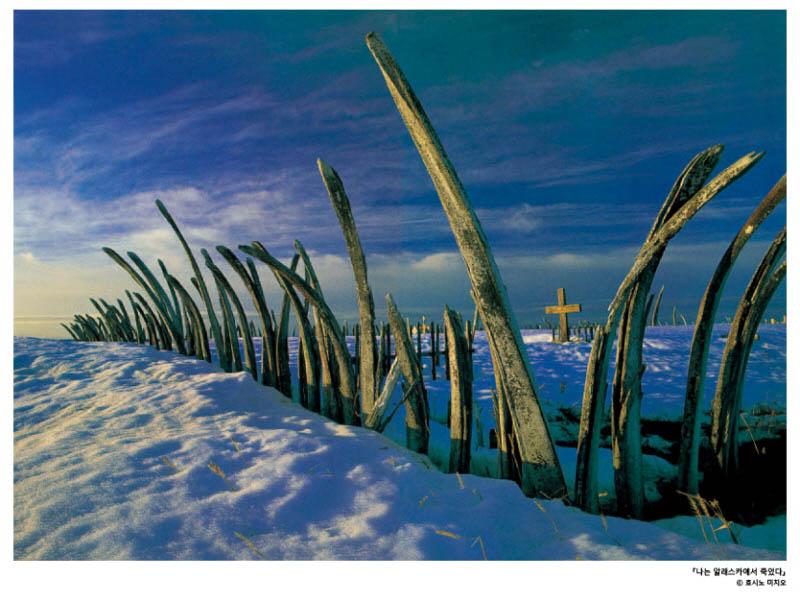 나는 알래스카에서 죽었다_사진19.jpg
