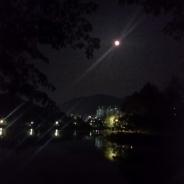충주의 호암지 밤풍경
